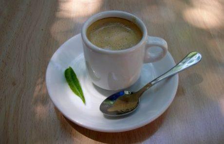 כן, אני נאבק גם על הזכות שלי לשבת בבתי קפה